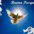 Un Augurio di una Serena e Felice Pasqua nella gioia di Cristo Risorto a tutti voi e alle vostre famiglie. Tony Sciarrone e famiglia.