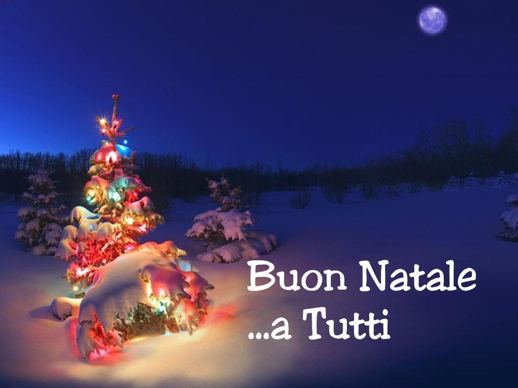 Un Affettuoso e Sincero Augurio di Buon Natale a Tutti. Comitato Scavuzzo.